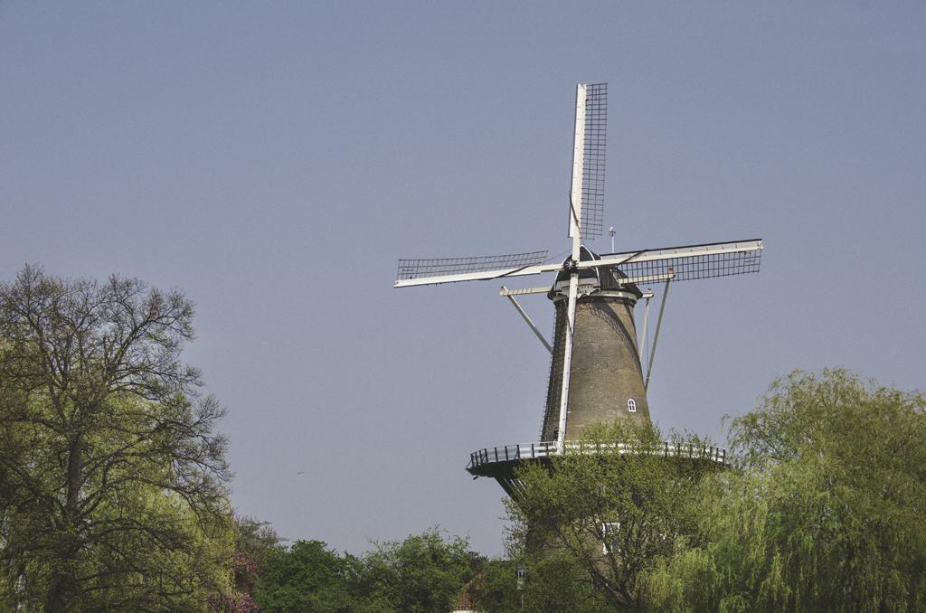 Moulin à vent, Leiden